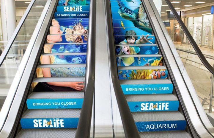 MIUK Sea Life